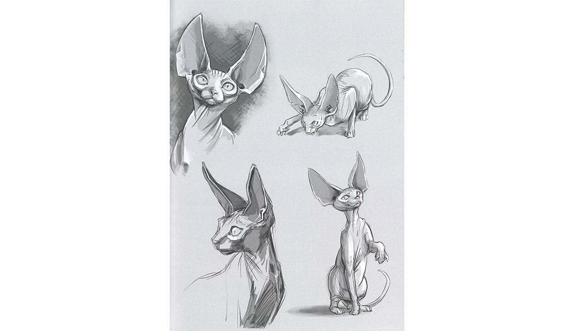 Parole de chat - Recherches : projet bachelor spécialisation illustration / bd