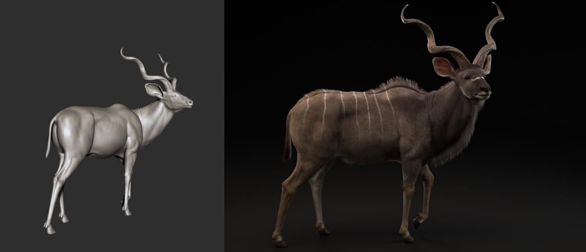 Greater Kudu : projet programme bachelor réalisateur animation 3d vfx