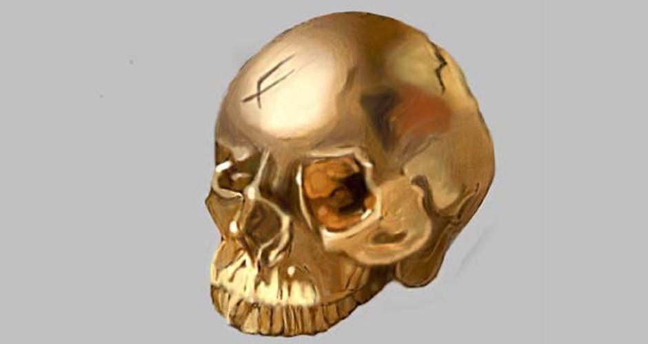 projet école classes préparatoires : Le crâne