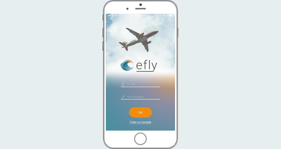 projet école design graphique et digital : Efly